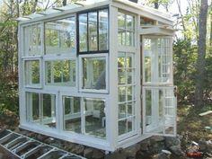 Une autre serre faite de vieilles fenêtres récupérées.