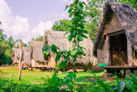 Ako Dhong Village, Buon Ma Thuot, Central Highlands, Vietnam