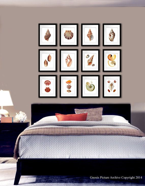 17 best images about sea shells beach decor wall art for 8x10 bedroom ideas