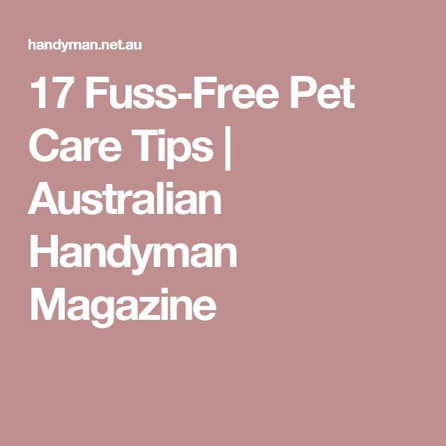 17 Fuss-Free Pet Care Tips | Australian Handyman Magazine