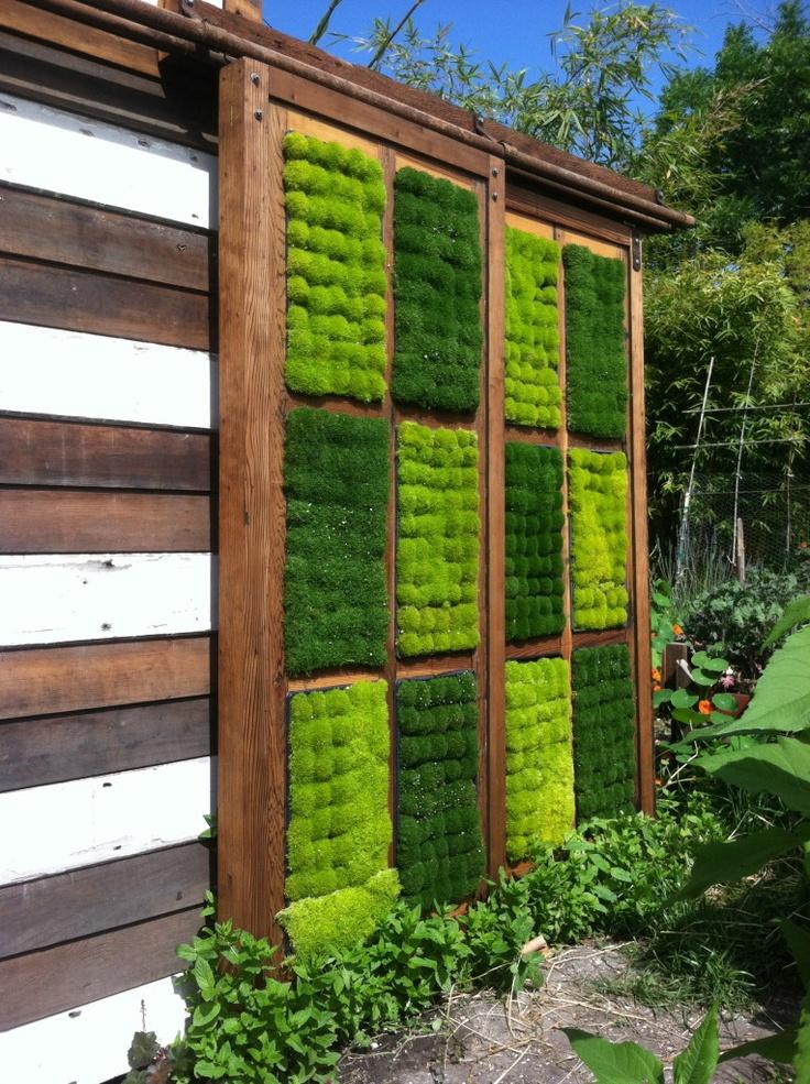Sliding doors to my outdoor shower moss salvaged redwood for Sliding glass doors garden