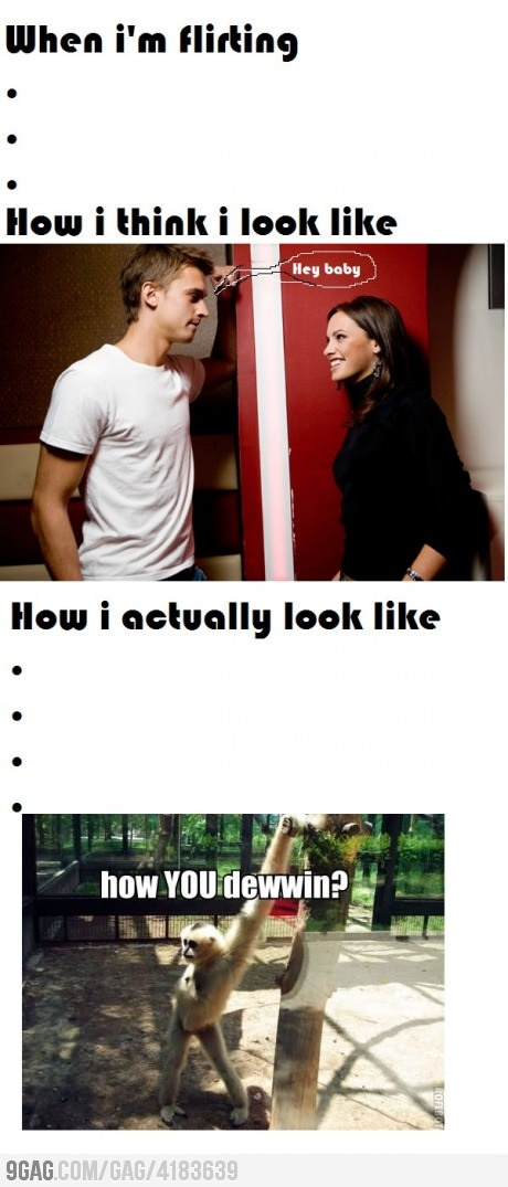 : Funny Pictures, Giggl, I M Flirting, Funny Stuff, So True, Humor, Hilarious, Monkey, True Stories