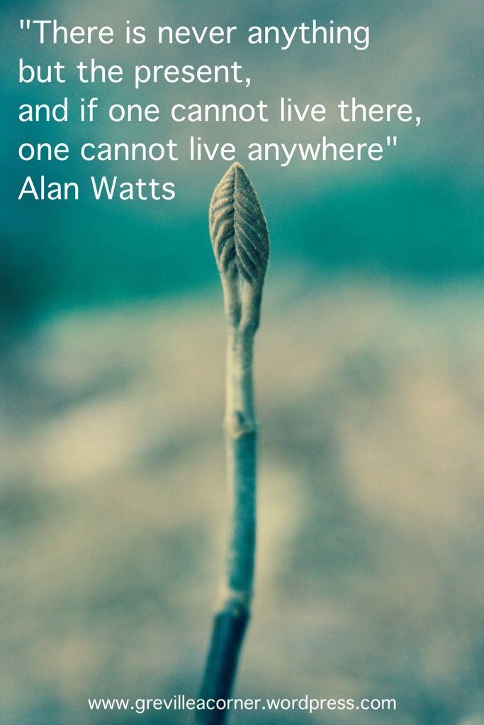 """""""No hay nada más que el presente, y si uno no puede vivir ahí, uno no puede vivir ne ninguna parte."""" – Alan Watts"""