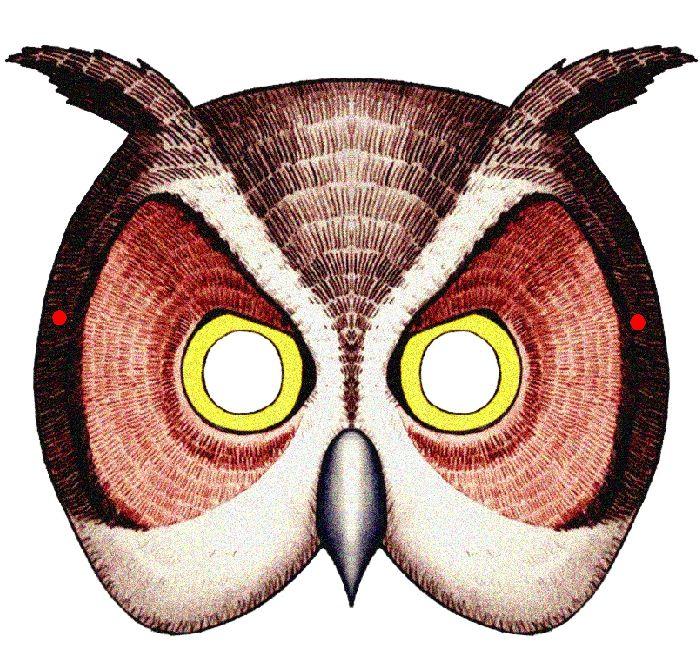 maski-zhivotnyx-iz-bumagi 4