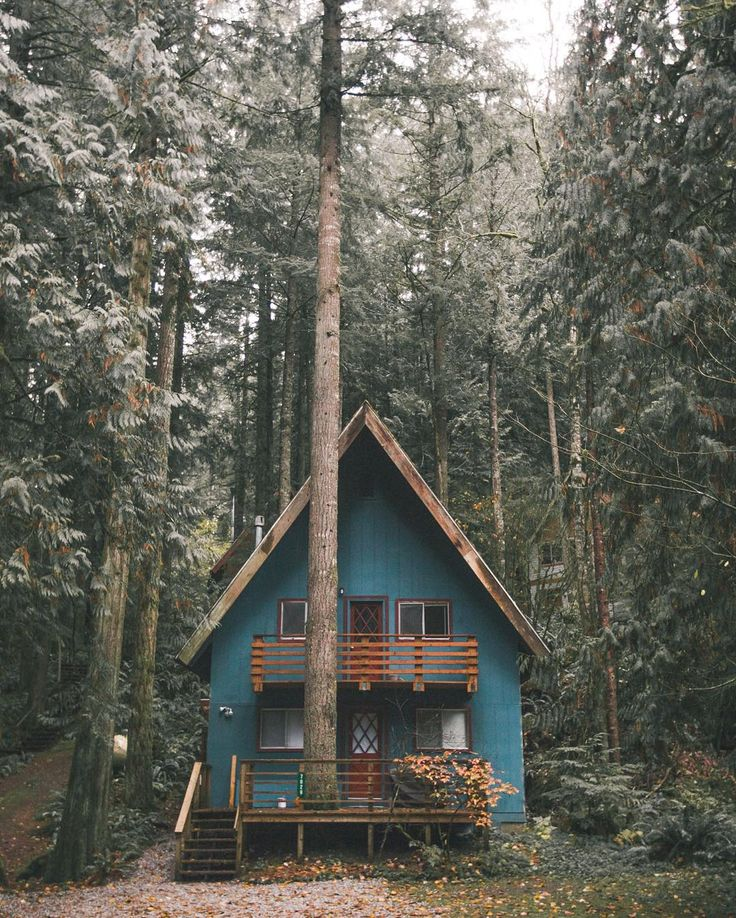 Blue cabin in the woods.