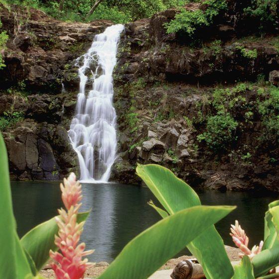 Waihi Falls, also known as Waimea Falls, on Oahu's North Shore.