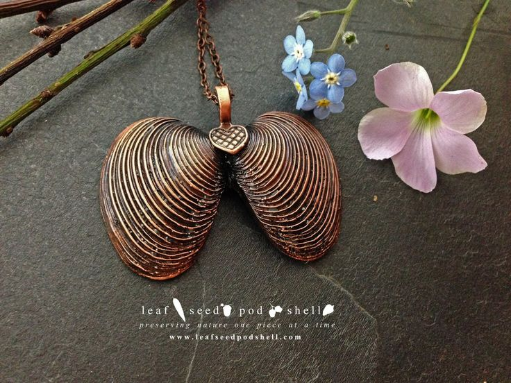 Not sure what these shells are called but it kind of looks like a butterfly to me.  Electroformed in antique copper.  Available from www.leafseedpodshell.com #leafseedpodshell #crystal #crystals #electroform #electroforming #electroformed #jewelry #jewellery