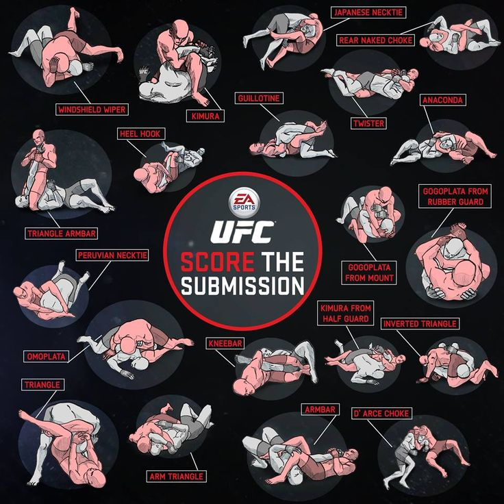 UFC score the submission