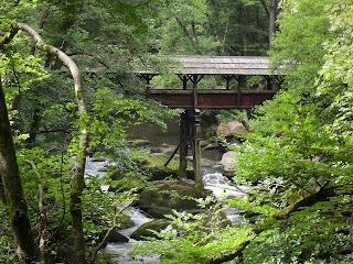Streifzüge durch die Natur: Wandern im Naturpark Südeifel – Irreler Wasserfälle