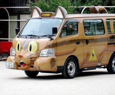 Image result for cat in bus