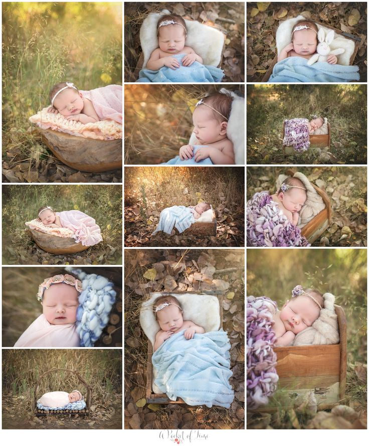 Outdoor newborn photography session with a baby girl by Los Angeles newborn photographer A Pocket of Time Photography