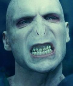 Voldemort!!Memes, Funny Face, Harrypotter, Google Search, Lord Voldemort, Harry Potter Movie, Bumble Bees, Cut Out, Ralph Fiennes