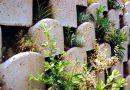Beton Katalog | Ploty a opěrné zdi