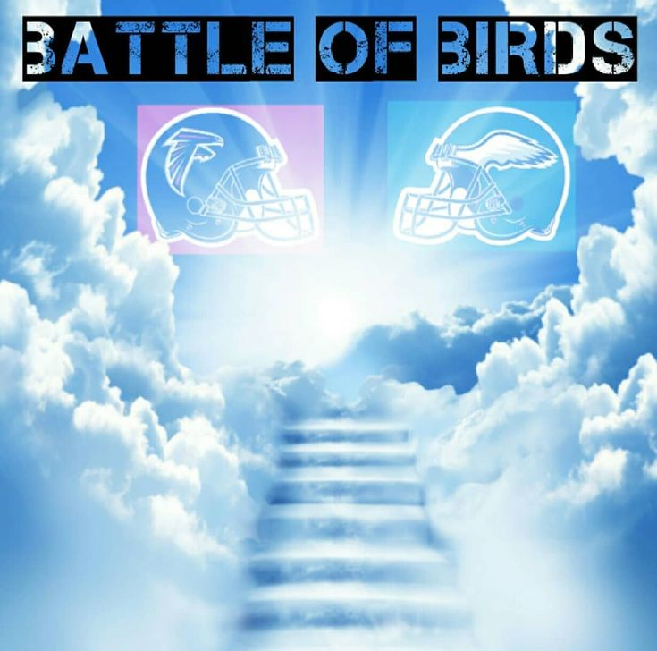 The battle of birds is up lets get this win and advance to the nfc championship game. #riseup  #atlantafalcons #atlanta #falcons #falconsfootball #falconsnation #falconsfan #falconsfans #riseupnation #riseup #inbrotherhood #nfl #football #nflplayoffs #philadelphiaeagles #eagles #atlvsphi