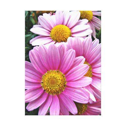 Striking Pink Gerbera Flower Photo Canvas Print - photos gifts image diy customize gift idea