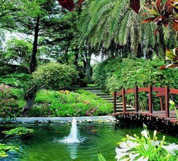17 best images about canary islands spain on pinterest la gomera hotels and del mar - Botanical garden puerto de la cruz ...