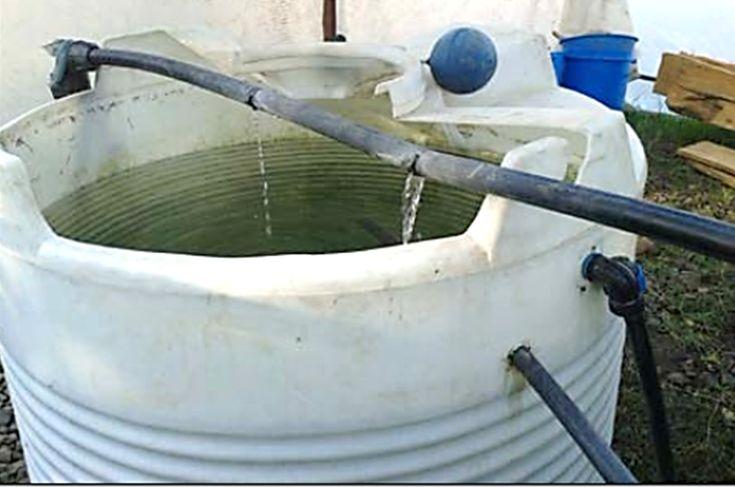 Figure 9 : Bac d'élevage de 1000 litres construit à partir d'une cuve en polyéthylène blanc
