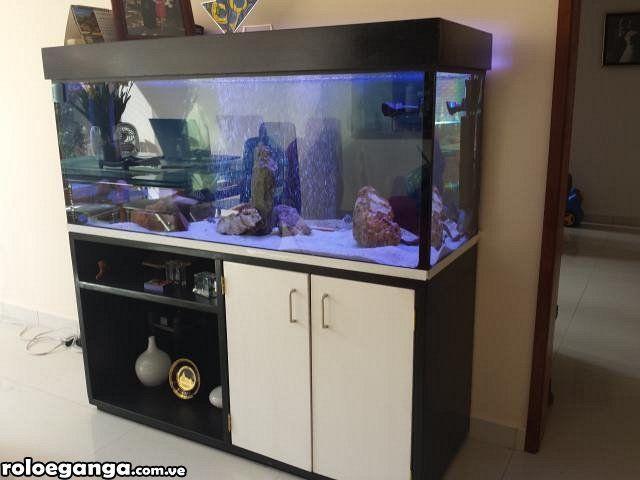 acuario pecera d diferente medida mueble y lampara en caracas pecera acuario y peceras