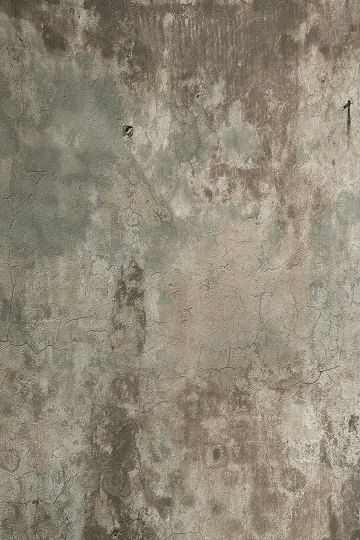 54x8 Photography Backdrop Faux Floor or wall
