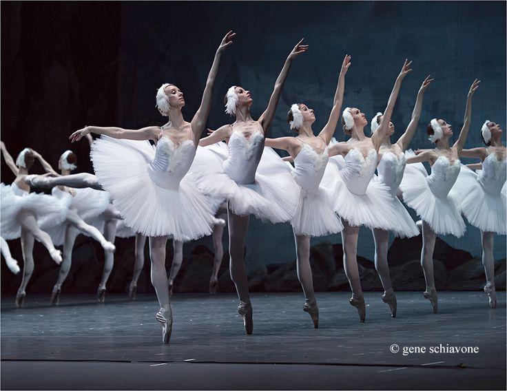 The Swans of the Mariinsky Theater - Gene Schiavone Ballet Photography
