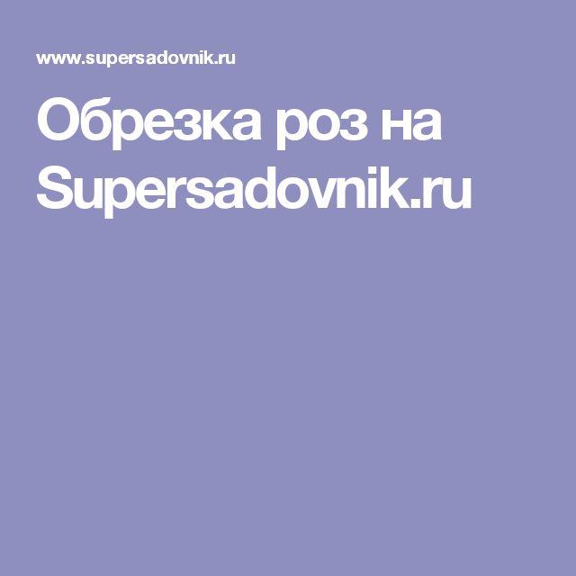 Обрезка роз на Supersadovnik.ru