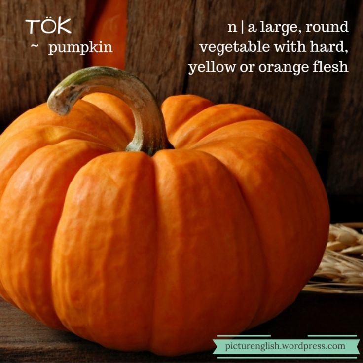 Pumpkin / Tök