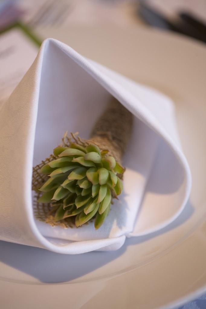 Lotus Leaf Napkin Folding :  folding accessories napkin towel folding napkin flower table napkin