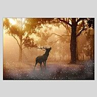 Oil Paintings Sika Deer Style Canvas Material With Wooden Stretcher Ready To Hang Size60*90CM and 50*70CM . – EUR € 67.48