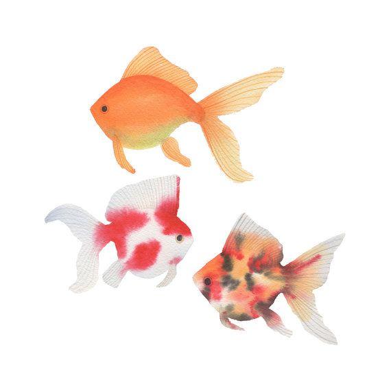 Goldfisch Aquarell Original Malerei / bunte Fische / Kindergarten bildende Kunst / Aquarium Fancy flossen Orange Artwork Dekor / zeitgenössische fröhlich