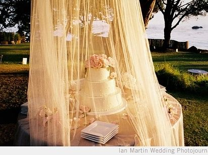 Use a netted canopy to keep bugs out of desserts and cake.   32 Totally & Best 25+ Outdoor wedding canopy ideas on Pinterest   Outdoor ...