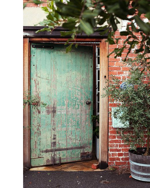 No room for a tree in your yard? Grow an olive tree at your front door in a barrel as  @Adriane Strampp has done. #urbanfarmhouseau