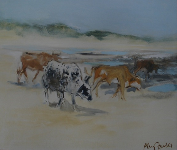Mary Fowlds Nguni Cattle