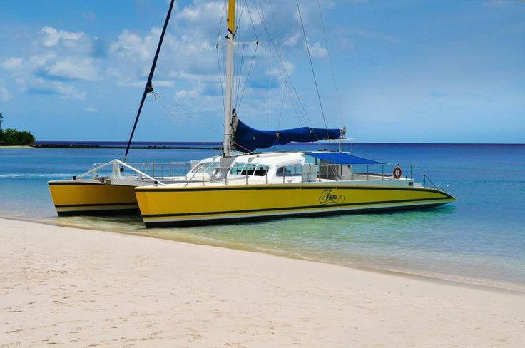 For a limited time, when you book your next trip to Barbados, you can earn up to $400 to spend on island activities like the Tiami Catamaran Day cruise! Find out more: http://www.visitbarbados.org/islandinclusive #BarbadosIslandInclusive