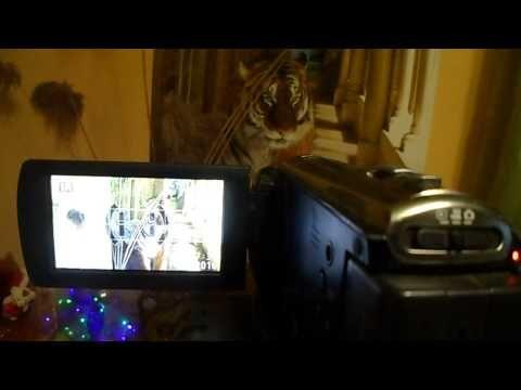 Моя видеокамера Panasonic для копа и походов , обзор для друзей.