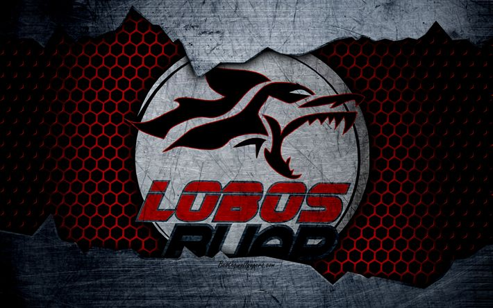 Download wallpapers Lobos BUAP, 4k, logo, Liga MX, soccer, Primera Division, football club, Mexico, grunge, metal texture, Lobos BUAP FC