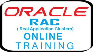 Learn Oracle Real Application Clusters (RAC) Online Course by well trained and certified trainers.