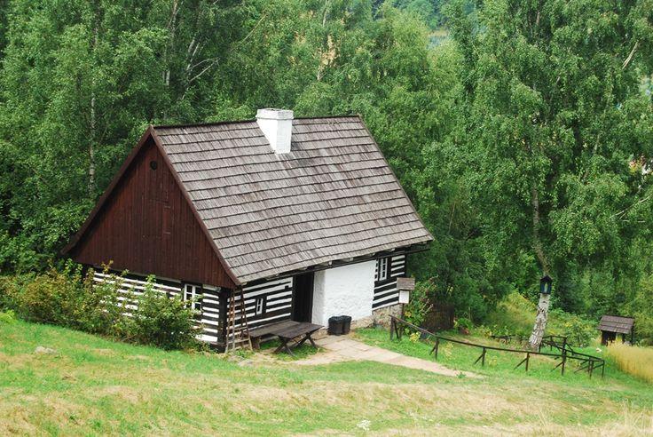 Proiecte de case mici la tara (2)