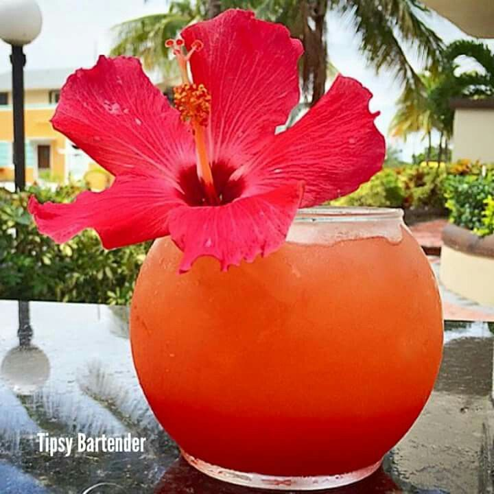 1000 ideas about fishbowl drink on pinterest girls for Fish bowl drink tipsy bartender