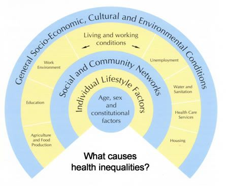 health inequality within communities essay Closing the gap of health inequalities between indigenous and non-indigenous australians by ainslee hooper this essay.