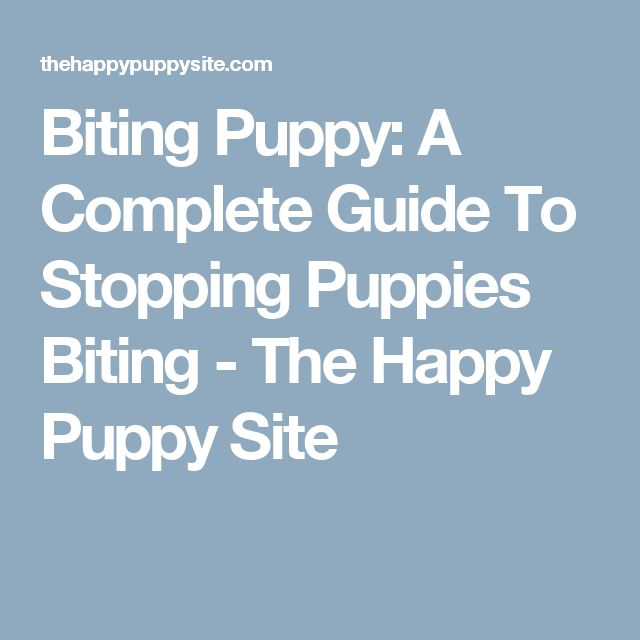 Biting Puppy: A Complete Guide To Stopping Puppies Biting - The Happy Puppy Site