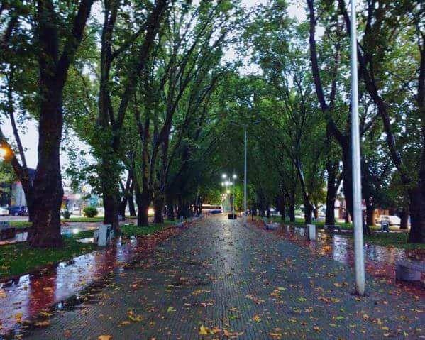 Alameda Curicó + LLuvia