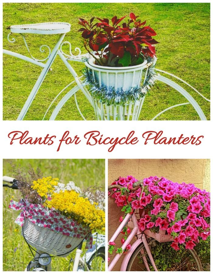 27 Fun And Whimsical Bicycle Planters For Your Garden And Yard