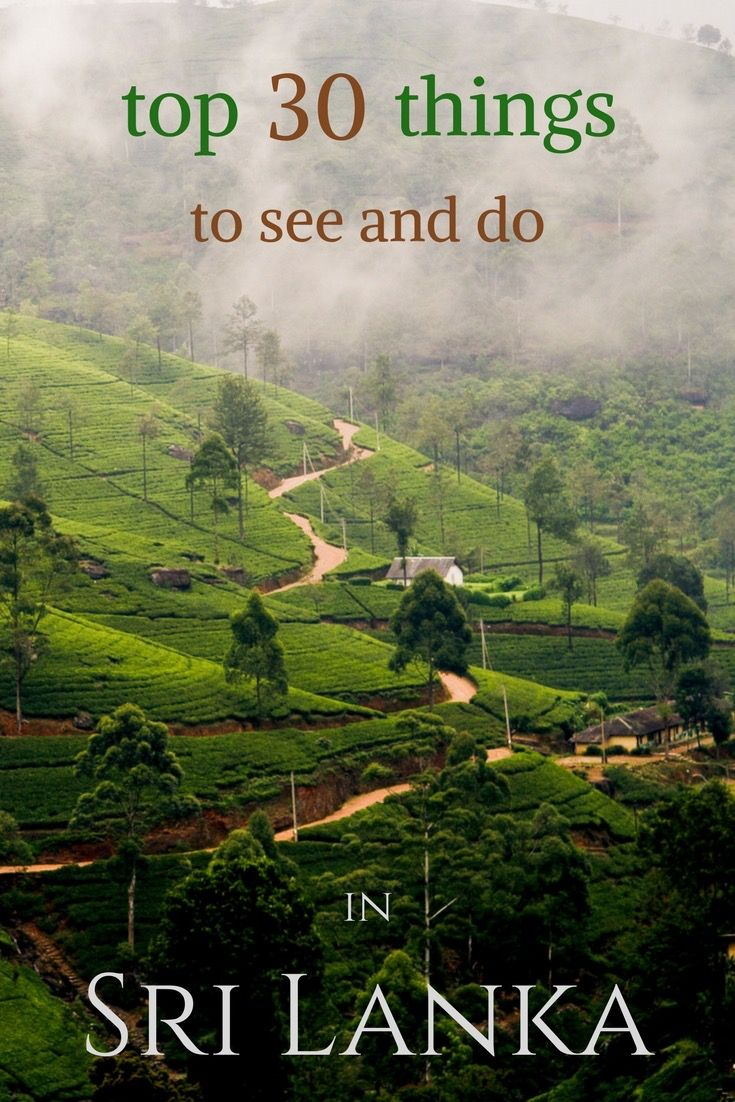 The most detailed list of things to see and do in Sri Lanka. Read to find out the best recommendations!