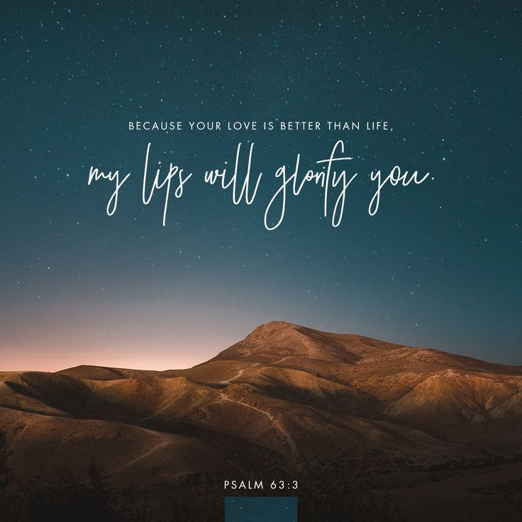 Because your love is better than life, my lips will glorify you. I will praise you as long as I live, and in your name I will lift up my hands.