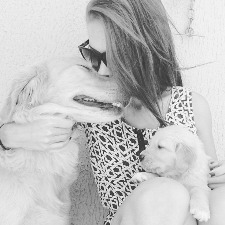 Deus olhou para os filhos com os olhos arregalados e disse Eles precisam de um companheiro então Deus fez o cachorro. #instadog #goldenretriever #puppy #goodafternoon by olhavanessa