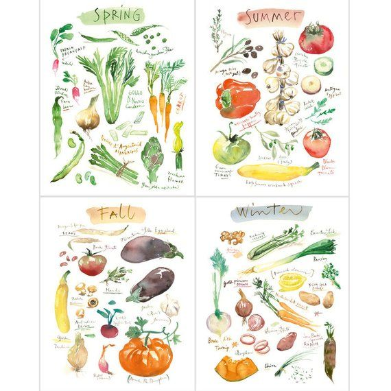 4 Seasons Wall Art Set Of 4 Prints Vegetable Poster Set