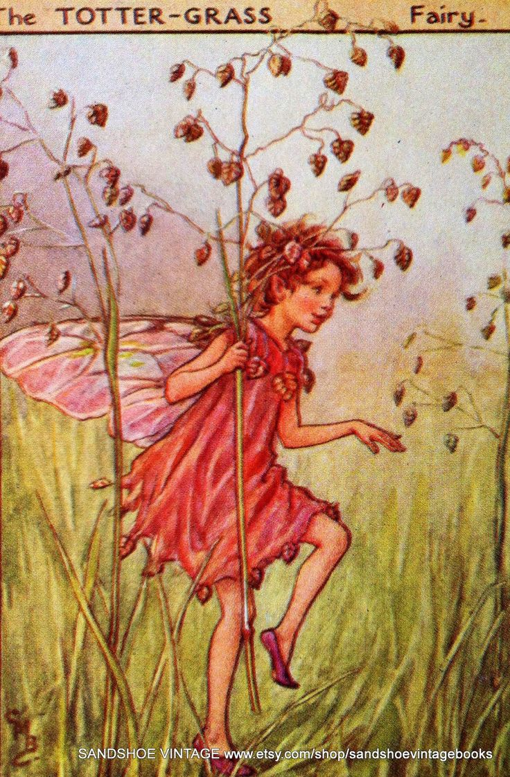 The Totter-grass fairy, by Cicely Mary Barker.