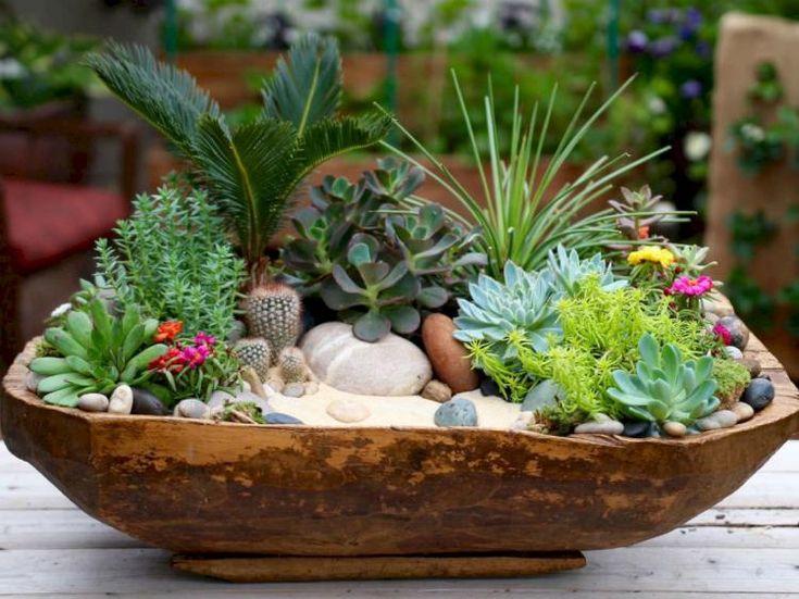 Enchanting DIY Indoor Succulent Garden Ideas