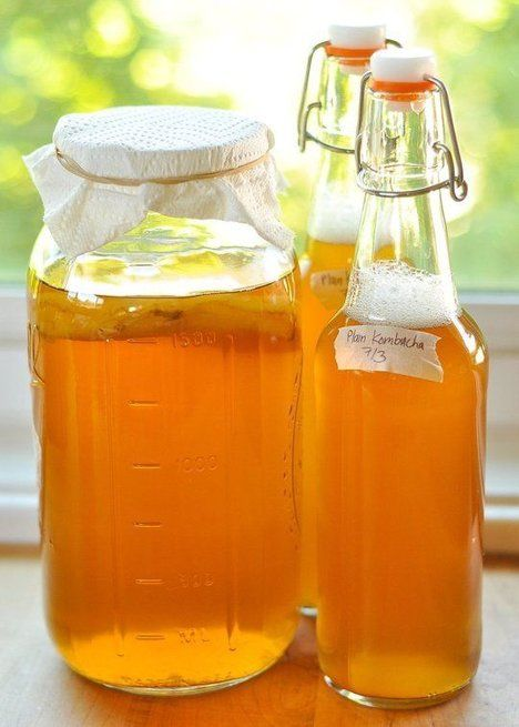 Fructose-free Kombucha