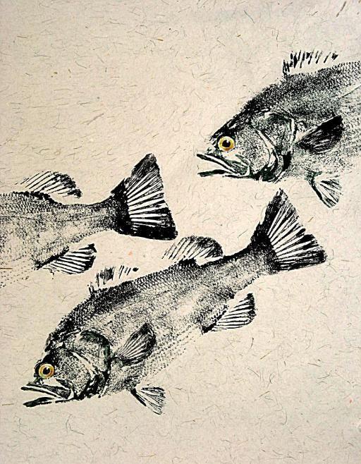 FRESH WATER GYOTAKU GALLERY - GYOTAKU Fish Rubbings - Art by Barry Singer